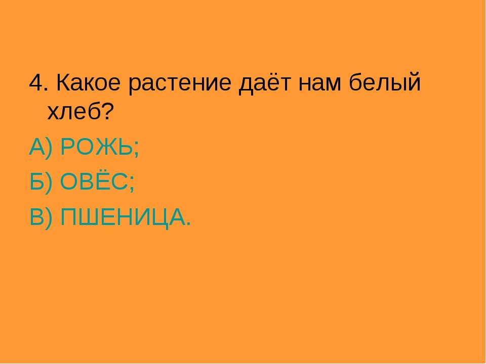 4. Какое растение даёт нам белый хлеб? А) РОЖЬ; Б) ОВЁС; В) ПШЕНИЦА.