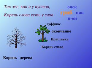 Корень дерева Корень слова Приставка суффикс окончание гриб н-ой ник очек Так