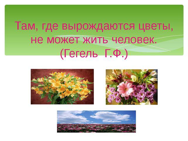Там, где вырождаются цветы, не может жить человек. (Гегель Г.Ф.)