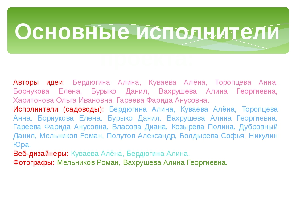 Основные исполнители проекта: Авторы идеи: Бердюгина Алина, Куваева Алёна, То...