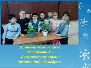 Мы узнали из энциклопедии, что пеларгония размножается черенками и семенами.