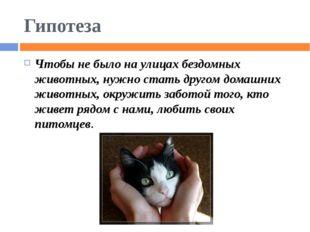 Гипотеза Чтобы не было на улицах бездомных животных, нужно стать другом домаш