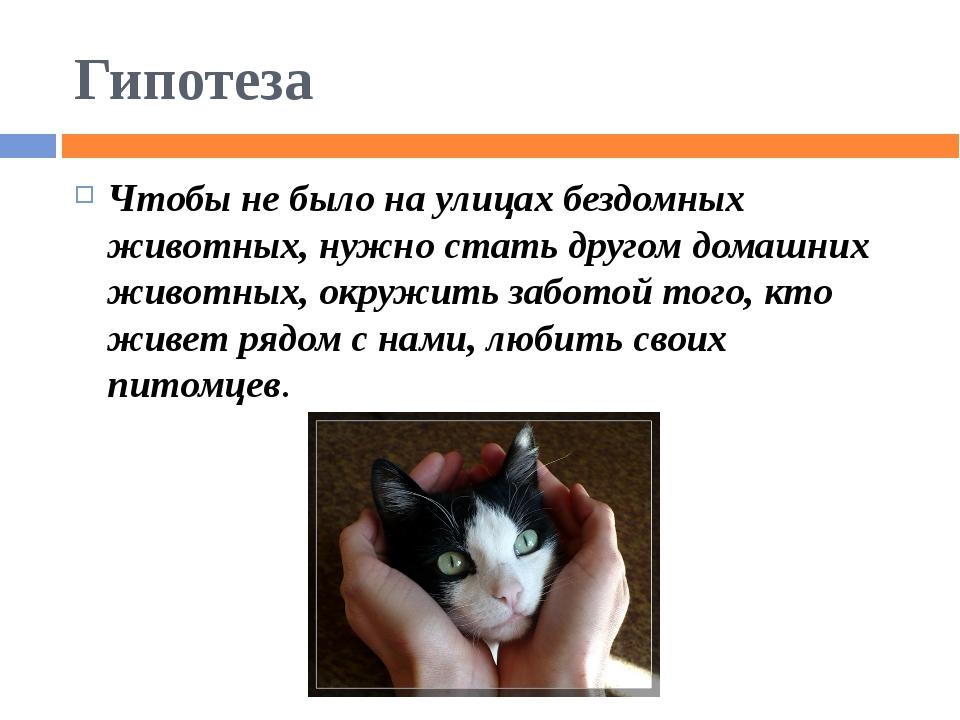 Гипотеза Чтобы не было на улицах бездомных животных, нужно стать другом домаш...