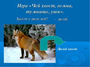 Игра «Чей хвост, голова, туловище, уши». Хвост у лисы чей? Лисий хвост - лисий.