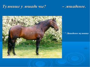Туловище у лошади чье? Лошадиное туловище – лошадиное.