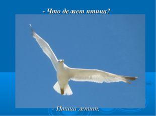 - Что делает птица? - Птица летит.