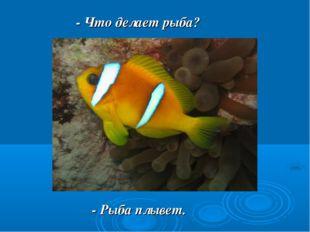 - Что делает рыба? - Рыба плывет.