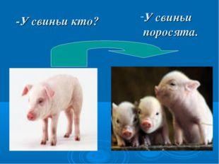 -У свиньи кто? У свиньи поросята.