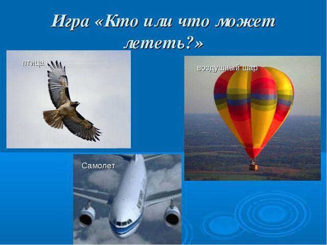 Игра «Кто или что может лететь?» Самолет воздушный шар птица
