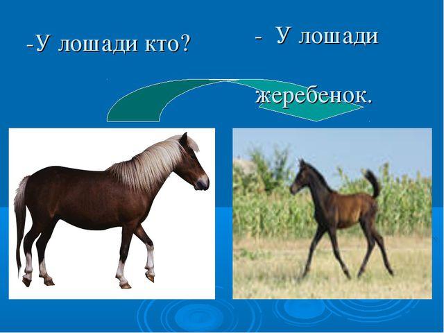 -У лошади кто? - У лошади жеребенок.