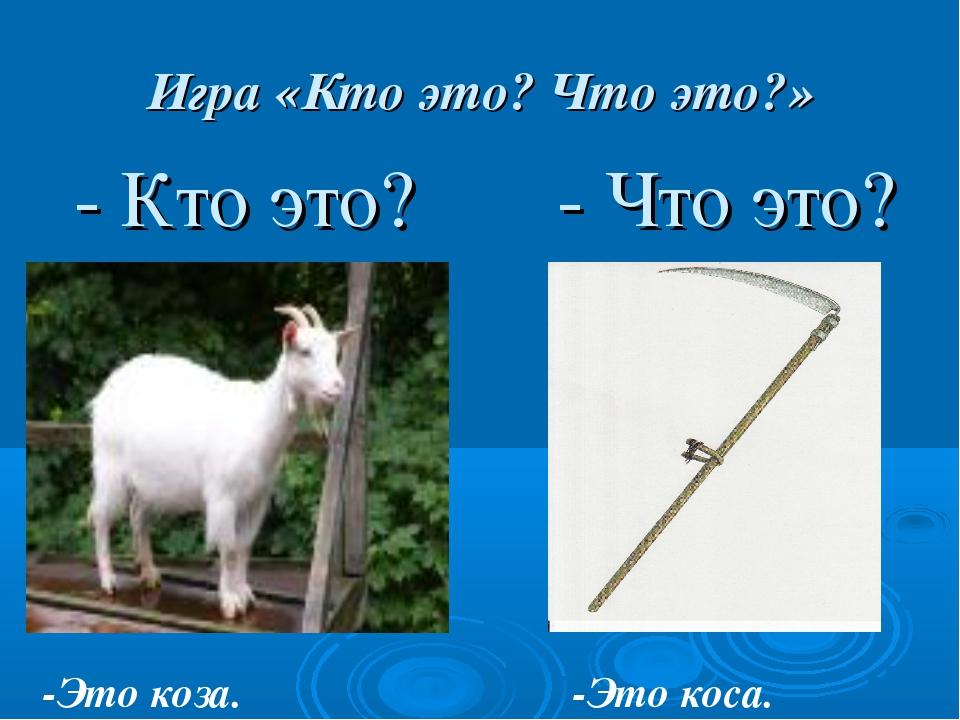 Игра «Кто это? Что это?» - Кто это? - Что это? -Это коза. -Это коса.
