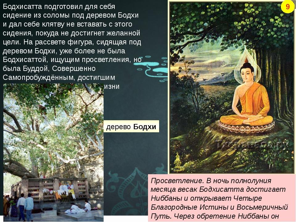 Бодхисатта подготовил для себя сидение из соломы под деревом Бодхи и дал себе...