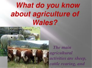 What do you know about agriculture of Wales? The main agricultural activitie