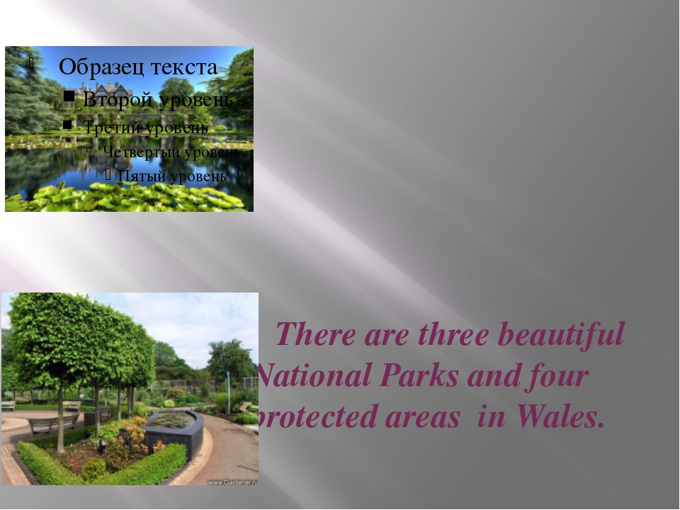 There are three beautiful National Parks and four protected areas in Wales.