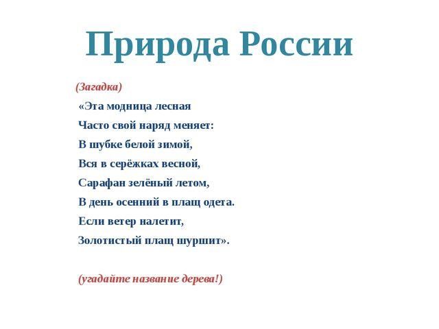 Природа России (Загадка) «Эта модница лесная Часто свой наряд меняет: В шубке...