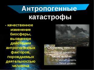 Антропогенные катастрофы - качественное изменение биосферы, вызванное действ