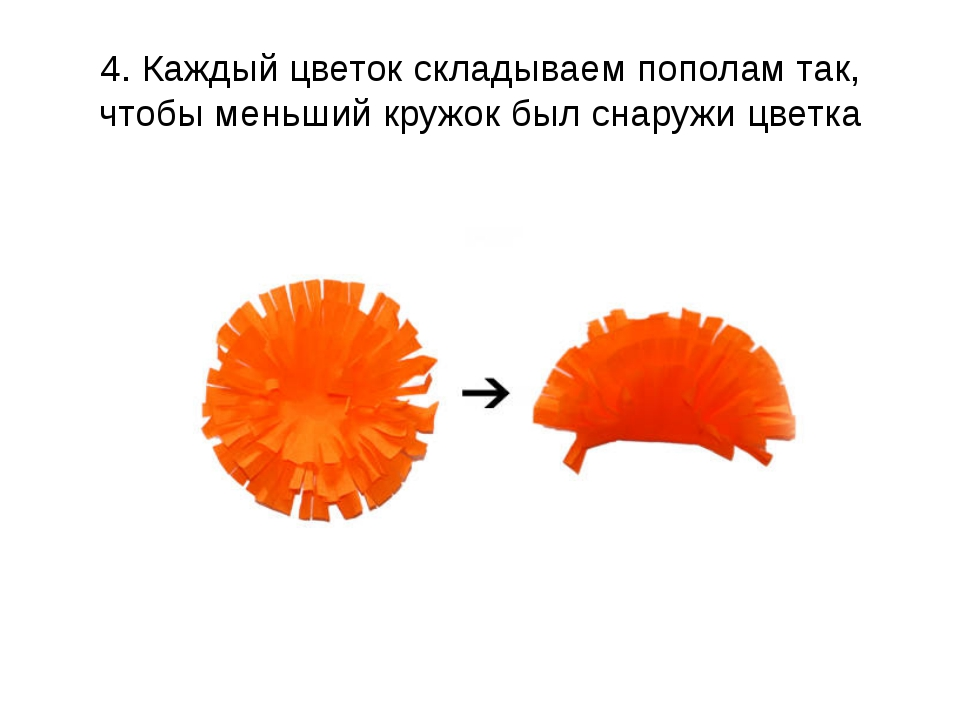 4. Каждый цветок складываем пополам так, чтобы меньший кружок былснаружи цве...