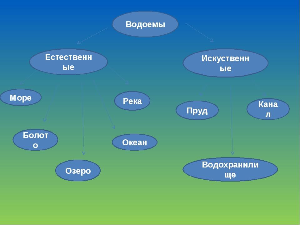 Водоемы Естественные Искуственные Море Река Болото Озеро Океан Водохранилище...