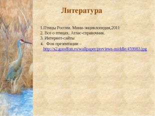 Литература 4. Фон презентации – http://s2.goodfon.ru/wallpaper/previews-middl