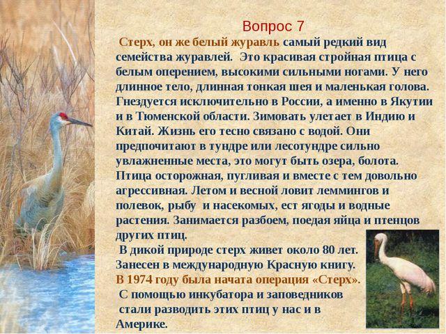 Вопрос 7 Стерх, он же белый журавль самый редкий вид семейства журавлей. Это...
