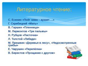 С. Есенин «Поёт зима – аукает….» Г. Скребицкий «Мать» В. Гаршин «Пленница» М.