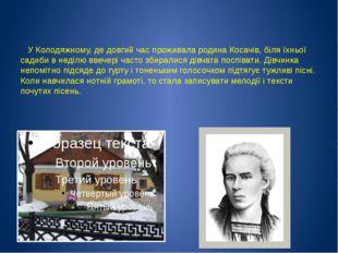 У Колодяжному, де довгий час проживала родина Косачів, біля їхньої садиби в