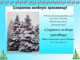 МОУ «Основная общеобразовательная школа №12 с.Тереховка» Надеждинского района