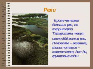Реки Кроме четырех больших рек, по территории Татарстана текут около 500 малы