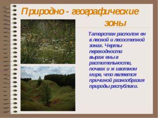 Природно - географические зоны Татарстан расположен в лесной и лесостепн