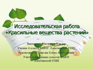 Исследовательская работа «Красильные вещества растений» Выполнил: Магжанов Ил