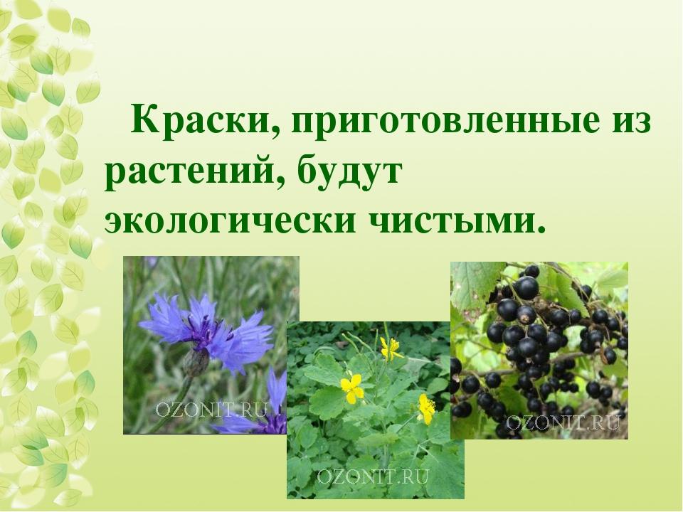 Краски, приготовленные из растений, будут экологически чистыми.