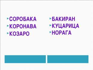 СОРОБАКА КОРОНАВА КОЗАРО БАКИРАН КУЦАРИЦА НОРАГА