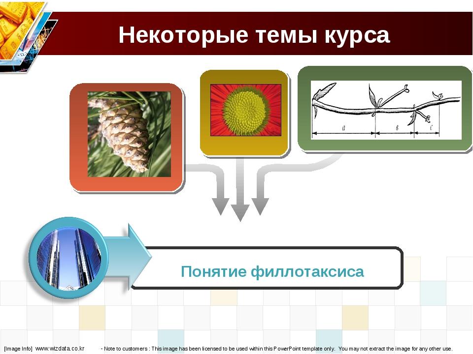 Некоторые темы курса Понятие филлотаксиса [Image Info] www.wizdata.co.kr - No...