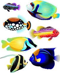 C:\Users\Neo\Desktop\Педагогическая планета ПОПОВА\ПРИЛОЖЕНИЯ\Морские рыбки.jpg