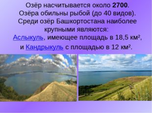 Озёр насчитывается около 2700. Озёра обильны рыбой (до 40 видов). Среди озёр
