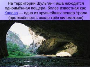 На территории Шульган-Таша находится одноимённая пещера, более известная как