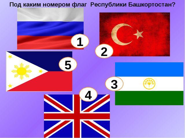 1 5 2 3 4 Под каким номером флаг Республики Башкортостан?