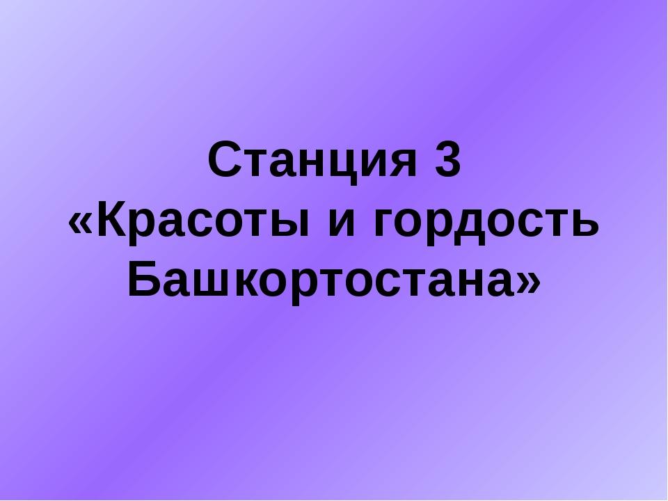Станция 3 «Красоты и гордость Башкортостана»
