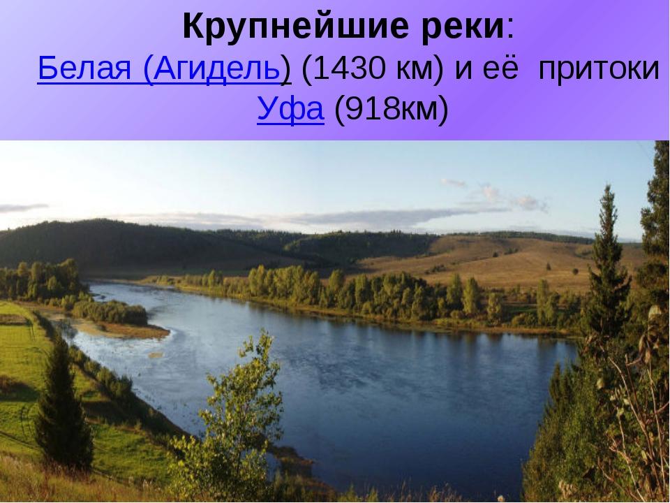 Крупнейшие реки: Белая (Агидель)(1430 км) и её притокиУфа(918км)
