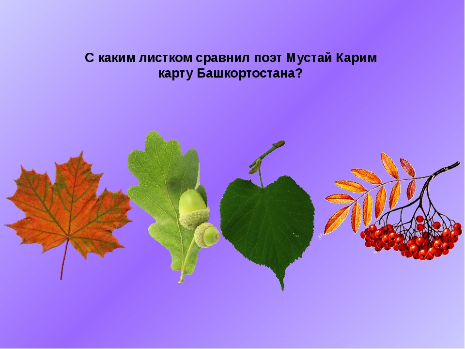 С каким листком сравнил поэт Мустай Карим карту Башкортостана?