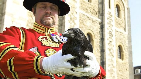 http://news.bbcimg.co.uk/media/images/64862000/jpg/_64862231_0ded4f76-6da3-493e-877e-2282ab5f890d.jpg