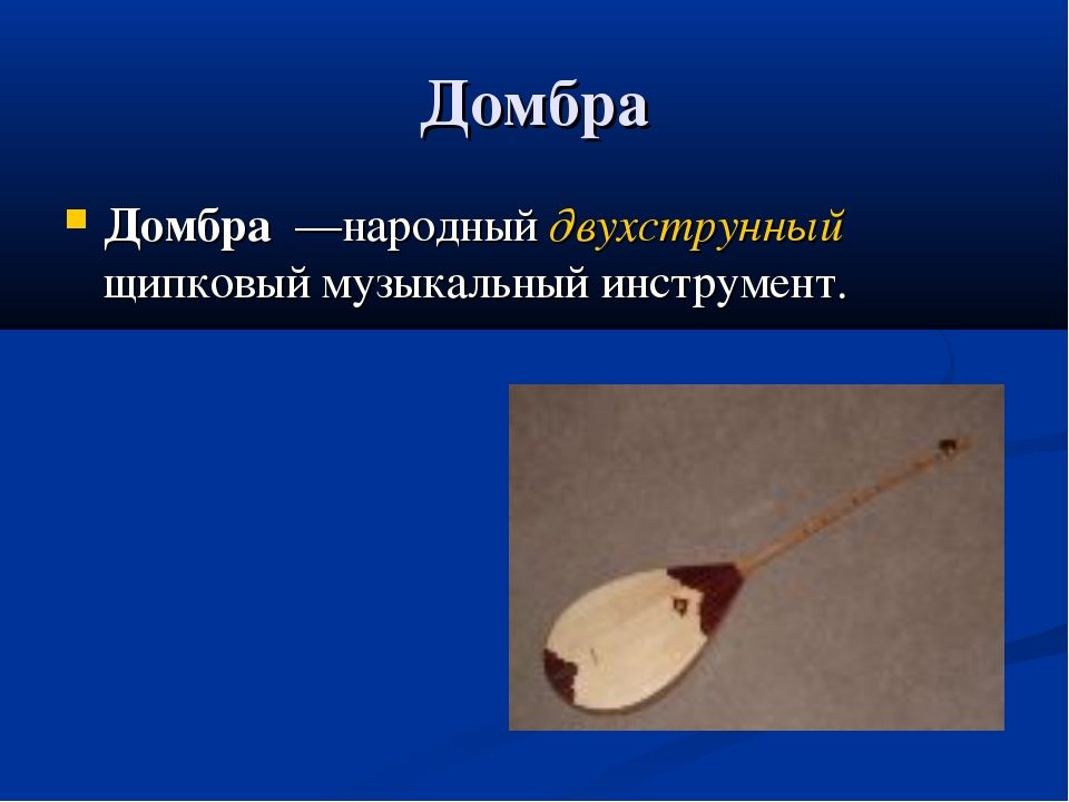 Домбра Домбра —народный двухструнный щипковый музыкальный инструмент.