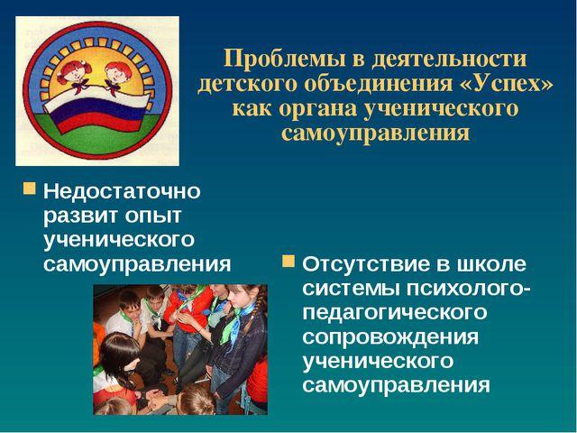 Проблемы в деятельности детского объединения «Успех» как органа ученического...