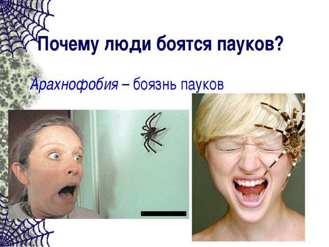Почему люди боятся пауков? Арахнофобия – боязнь пауков