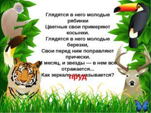 К семейству каких домашних птиц принадлежит героиня русской народной сказки,