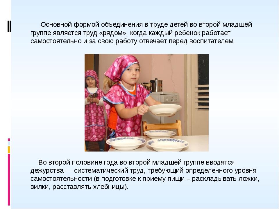 Конспект описания труда по самообслуживанию детей второй младшей группы