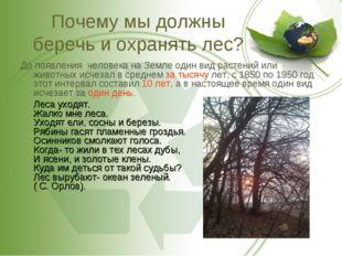 Почему мы должны беречь и охранять лес? До появления человека на Земле один в