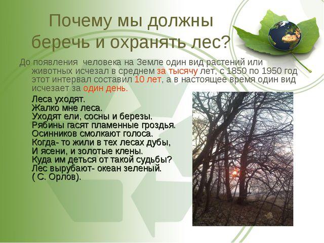 Почему мы должны беречь и охранять лес? До появления человека на Земле один в...