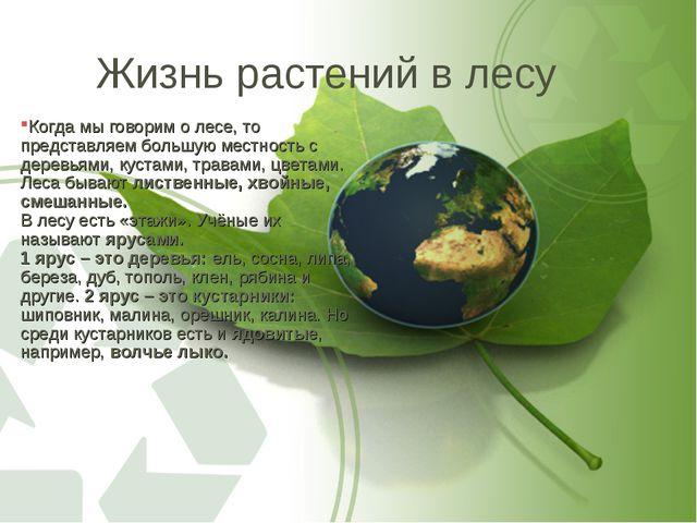 Жизнь растений в лесу Когда мы говорим о лесе, то представляем большую местно...