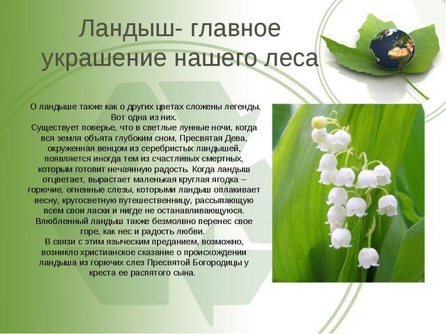 Ландыш- главное украшение нашего леса О ландыше также как о других цветах сло...